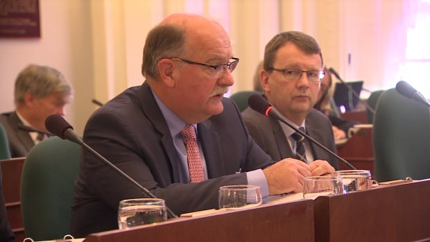 Deputy Finance Minister George McLellan speaks Wednesday at the legislature's public accounts committee.