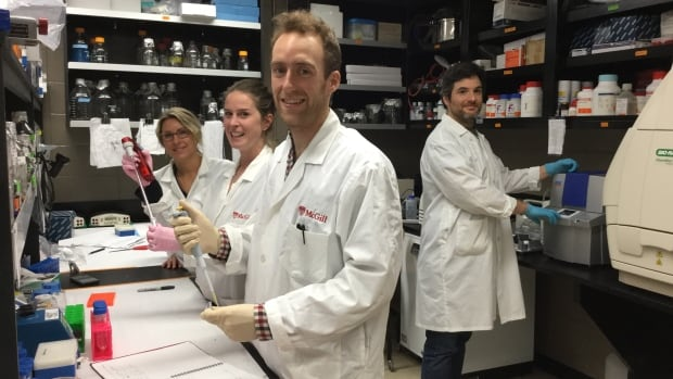McGill researchers (from left) Sarah Kimmins, Christine Lafleur, Keith Siklenka and  Romain Lambrot were part of a team that found changes to signals in sperm proteins called histones can affect the health of a father's offspring.