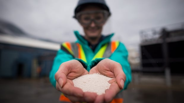 Senior process engineer Jane Ritchie holds solid calcium carbonate pellets that were formed by precipitating captured carbon dioxide at Calgary-based Carbon Engineering's first direct air capture plant in Squamish, B.C.