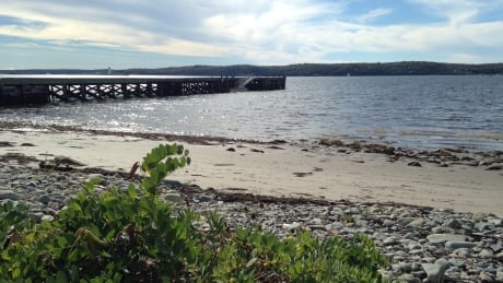 McNabs Island infrastructure suffering under repeated winter storms thumbnail