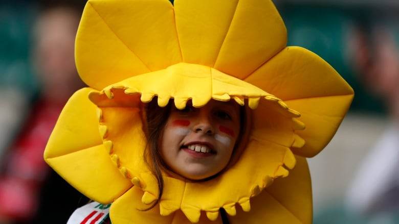 Welsh Manitobans Celebrate St Davids Day Cbc News