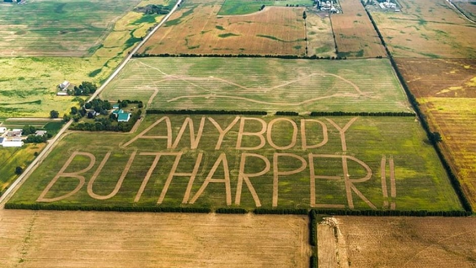 "John Langs plowed ""Anybody but Harper!!"" into the 46-acre rye field on his farm in Burford, Ont. Anything But Conservative, also known as the ABC campaign encourages strategic voting."