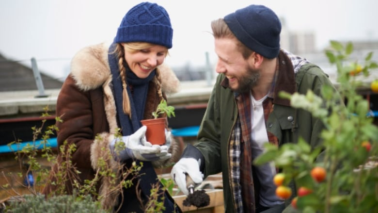 How to prepare your garden for winter 5 tips from brian for Canadian gardening tips