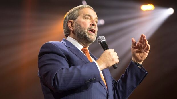 NDP Leader Tom Mulcair did not endorse the Leap Manifesto at the time of its release but said he welcomed new ideas and understood it reflected a desire for change.