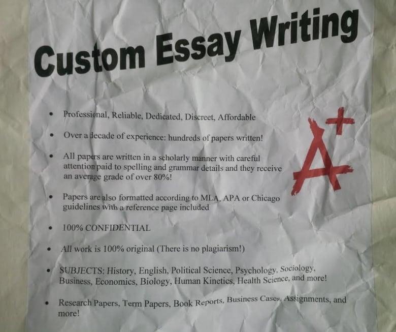 Help with custom analysis essay on trump