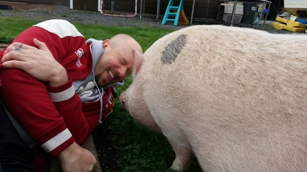 Mike Downey says he will go wherever his two pot-bellied pigs, Vishnu and Athena, go.