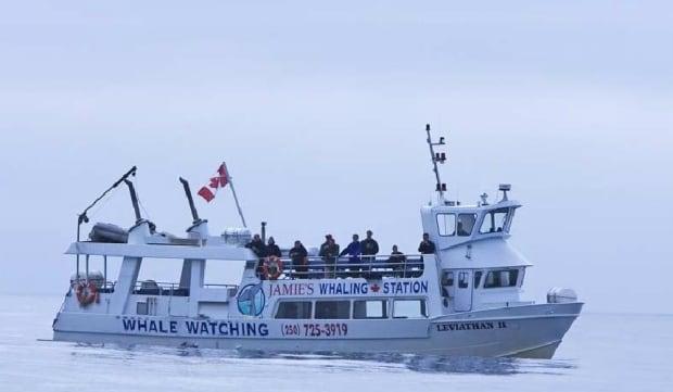 mv-leviathan-II-jamies-whaling-station