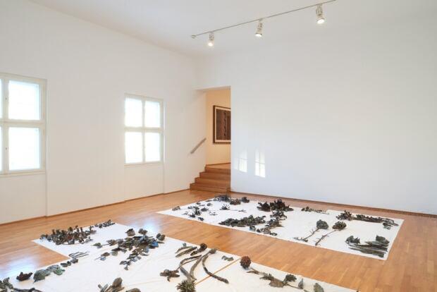 Sobey Art Award 2015 - Abbas Akhavan - Hanging Garden