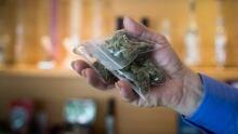 marijuana in a bag