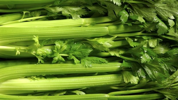 The price of celery rose 18.8 per cent in the past year, leading the fresh vegetable price hikes tracked by Statistics Canada.