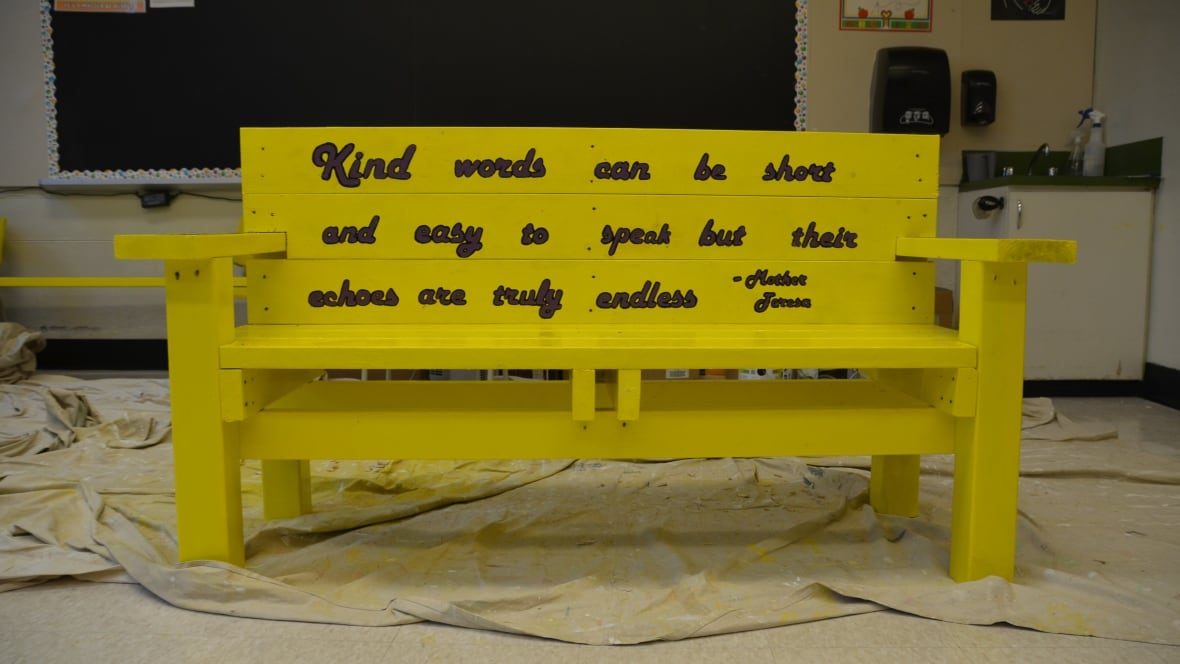 100 buddy bench story foundation projects colin maroney col