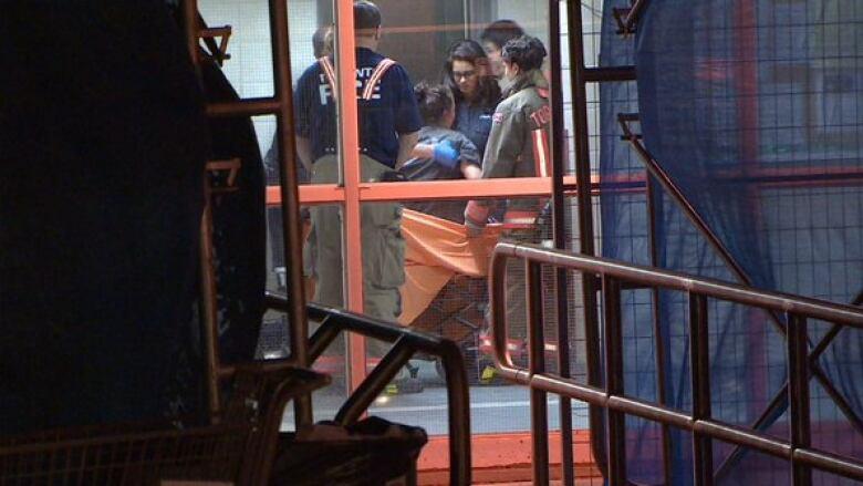 Dog Strangled By Leash Stuck In Elevator Door In Toronto Cbc News