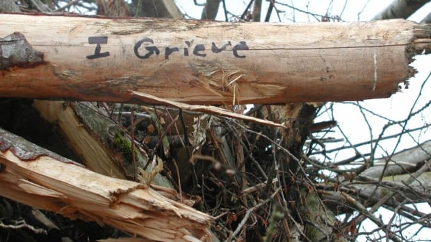 Surrey residents are writing on logs and stumps in areas that have been clear cut.