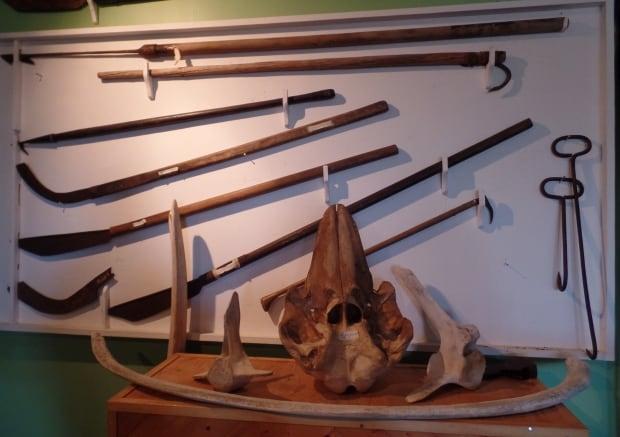 Dildo Whaling Museum