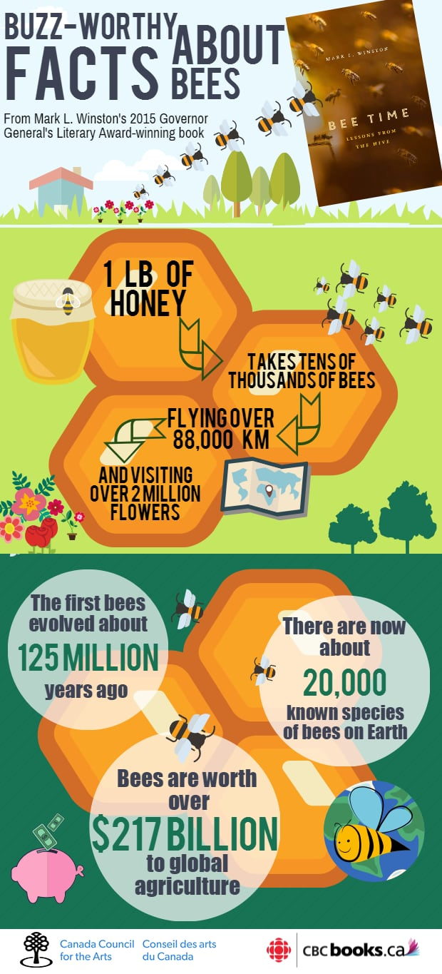 Bee Time Infographic