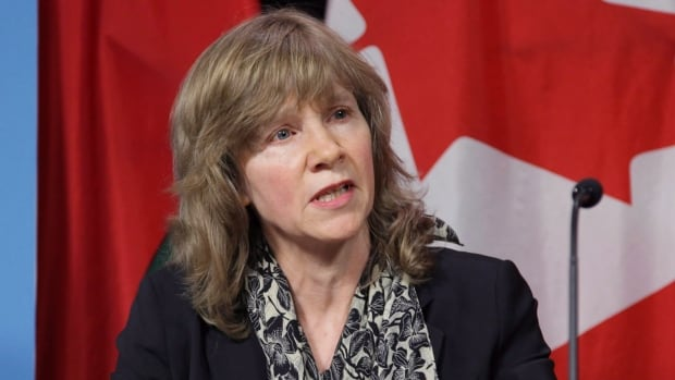 Ontario's acting environmental commissioner, Ellen Schwartzel, says that the province recovers only 1.2 per cent of the $16.2 million it spends each year on water quantity management programs.