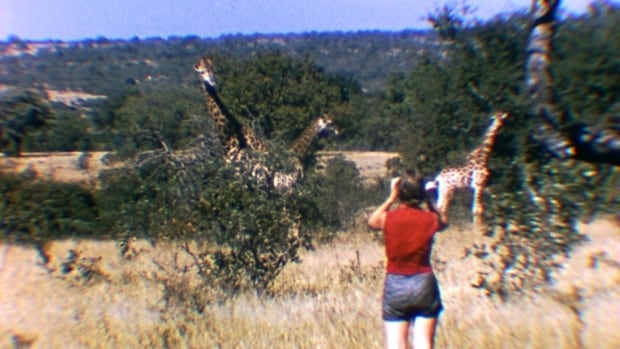 Anne Innis Dagg's careful observations of giraffe behaviour were the first of their kind for any African animal.