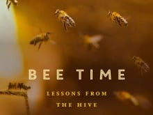 """Bee Time"" author Mark Winston and Sarah Common with Hives for Humanity. Mark Winston says we need to pay attention to the plight of bees because he believes bees have a lot to teach us about how we interact and how to be present in the world."