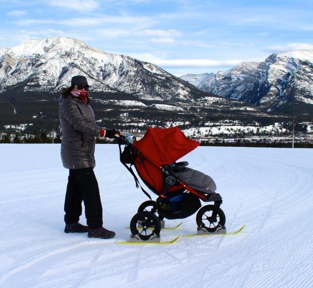 Polar Stroller 2
