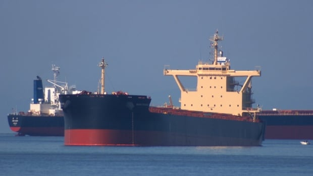 Vancouver-based Corvus Energy is aiming to provide large cargo ships like these with a hybrid lithium battery fuel system.