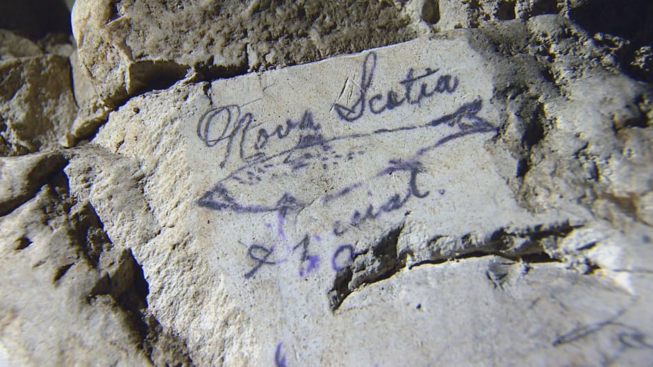 A fish etched into the rock by a Canadian soldier in 1917. It is one of a series of etchings in a tunnel under Vimy Ridge, just before the historic battle, that  have rarely been seen.