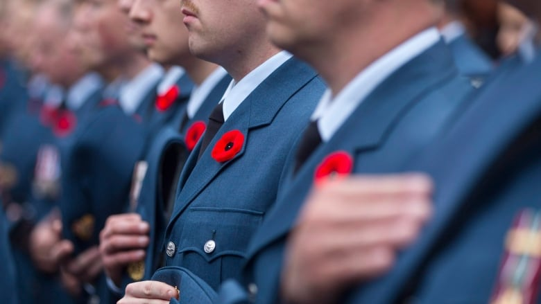 What S Open And Closed In Toronto On Remembrance Day Cbc News