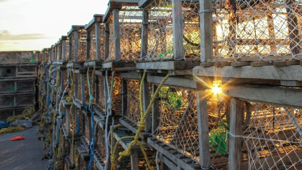 Inverness lobster traps