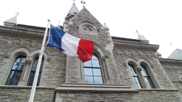 french flag ottawa city hall