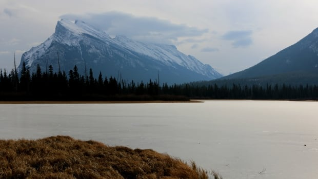 Like other mountain resort town, Banff's natural beauty attracts people from all over the world to visit but also live.