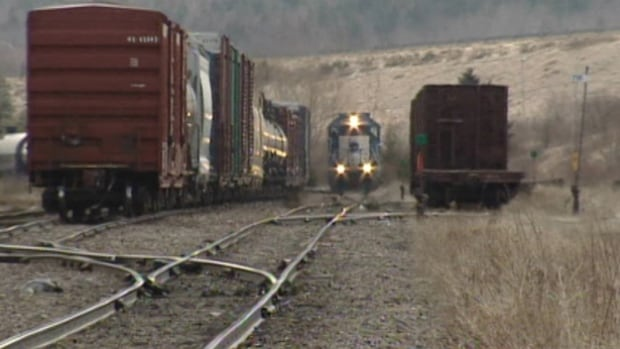 Cape Breton and Central Nova Scotia Railway is in talks with Harbor-Port Development Partners about the future of the rail line on the island.