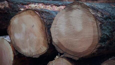 Softwood Lumber 20151013