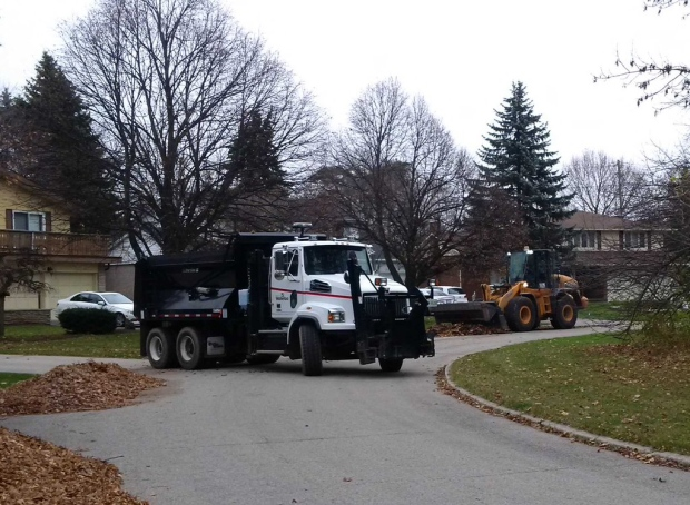 region could pay if waterloo dumps leaf collection