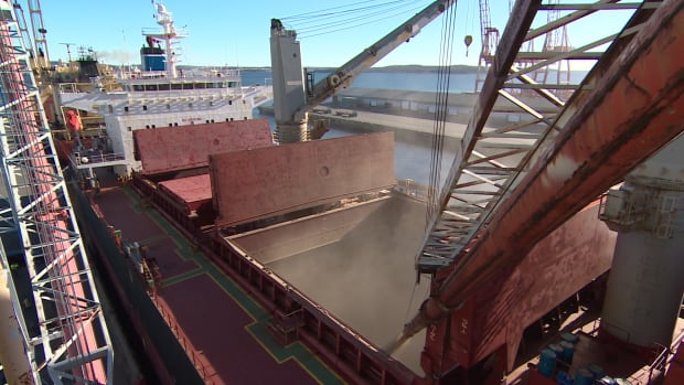 It will take three days to load this ship at Pier 28 in Halifax with 33,000 tonnes of of Nova Scotia-made wood pellets. It's headed for the U.K. and it will be used to generate electricity.