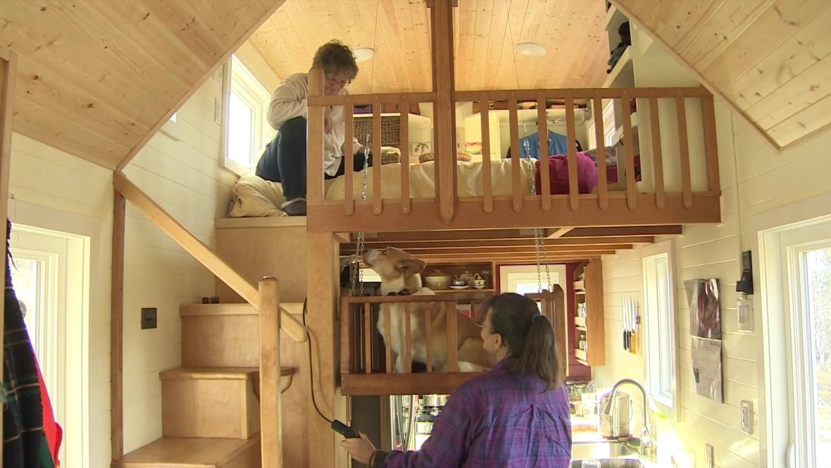 Cape Breton Couple Build Tiny 39 Dream Home 39 With Dog