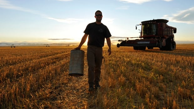 A worker carries an air filter during wheat harvest on a farm in Alberta. The 2016 Census of Agriculture released Wednesday, shows fewer and slightly older Canadian producers are planting more cropland on larger farms and are making relatively stable profits.