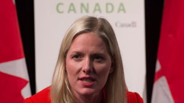 Canadian Minister of Environment and Climate Change Catherine McKenna speaks during a news conference, in Paris, France, on Sunday, Nov. 29, 2015.