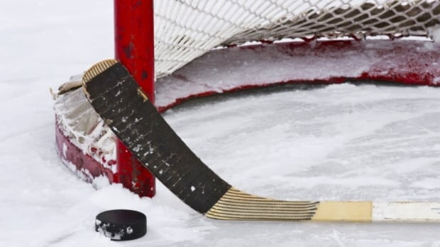 Wayne Gretzky recently threw support behind a decade-old idea which would see the sides of NHL goalposts flattened to help direct pucks toward the net.