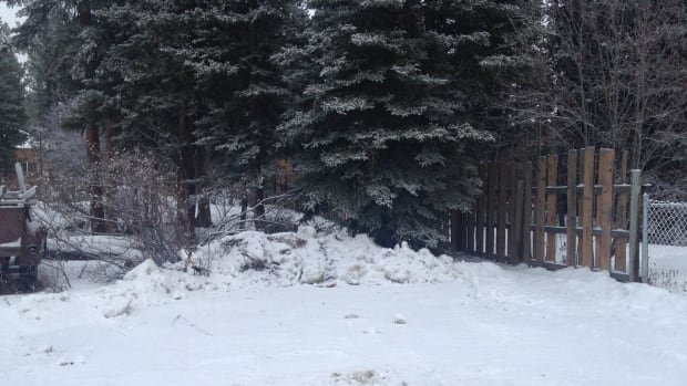 In December 2015, a pile of snow blocks the Whitehorse path where Brandy Vittrekwa's body was found one year earlier.