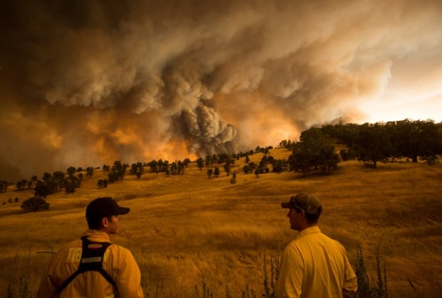 2015 Photos of the year Rocky Fire Clearlake California Aug 1
