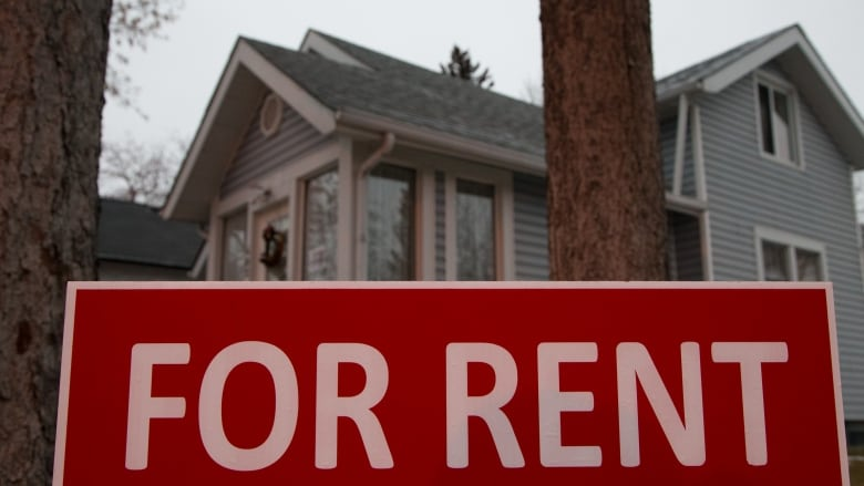 Increasing Rents Leave Some Islanders Struggling To Make Ends Meet Unique Average Rent For A 2 Bedroom Apartment
