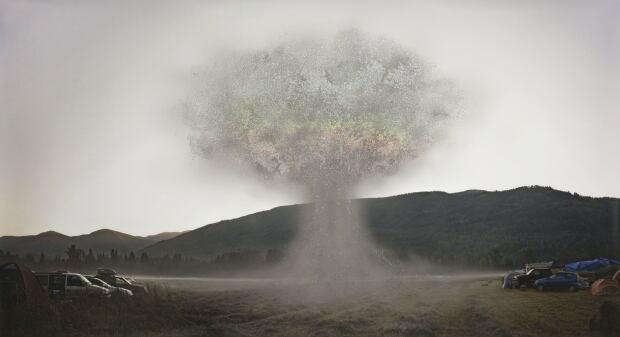 Sarah Anne Johnson - Glitter Bomb