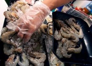Thailand Asia Shrimp