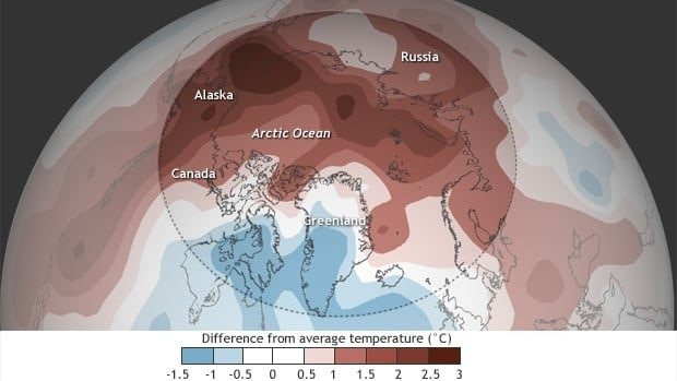 Arctic land areas recorded record temperatures this year.
