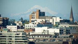 Ever lower vacancy rate puts squeeze on Victoria renters