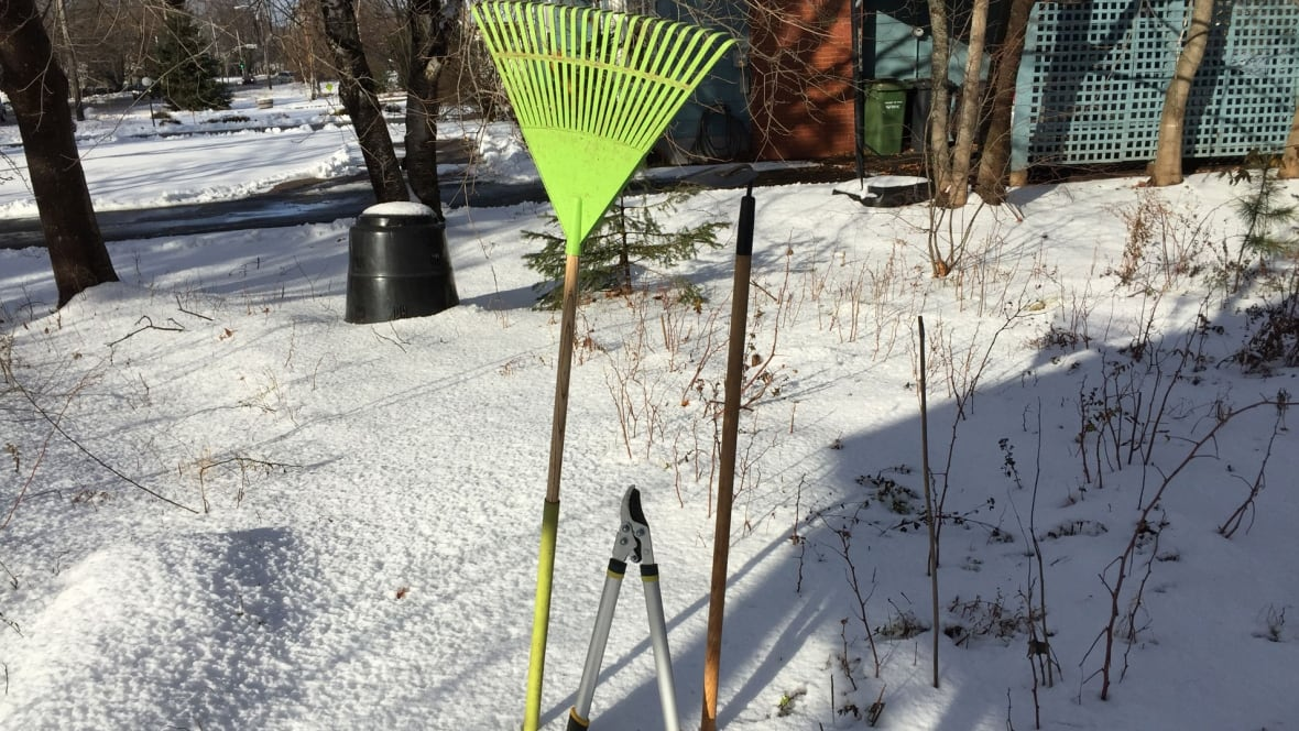 Master gardener offers winter weather tips to save your for Canadian gardening tips