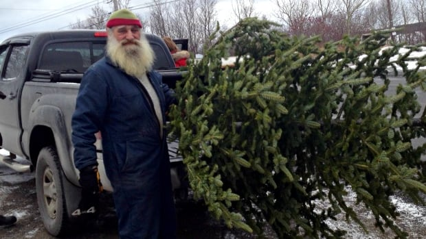 A very Boonie Christmas: Getting a tree from Clarenville seller a ...