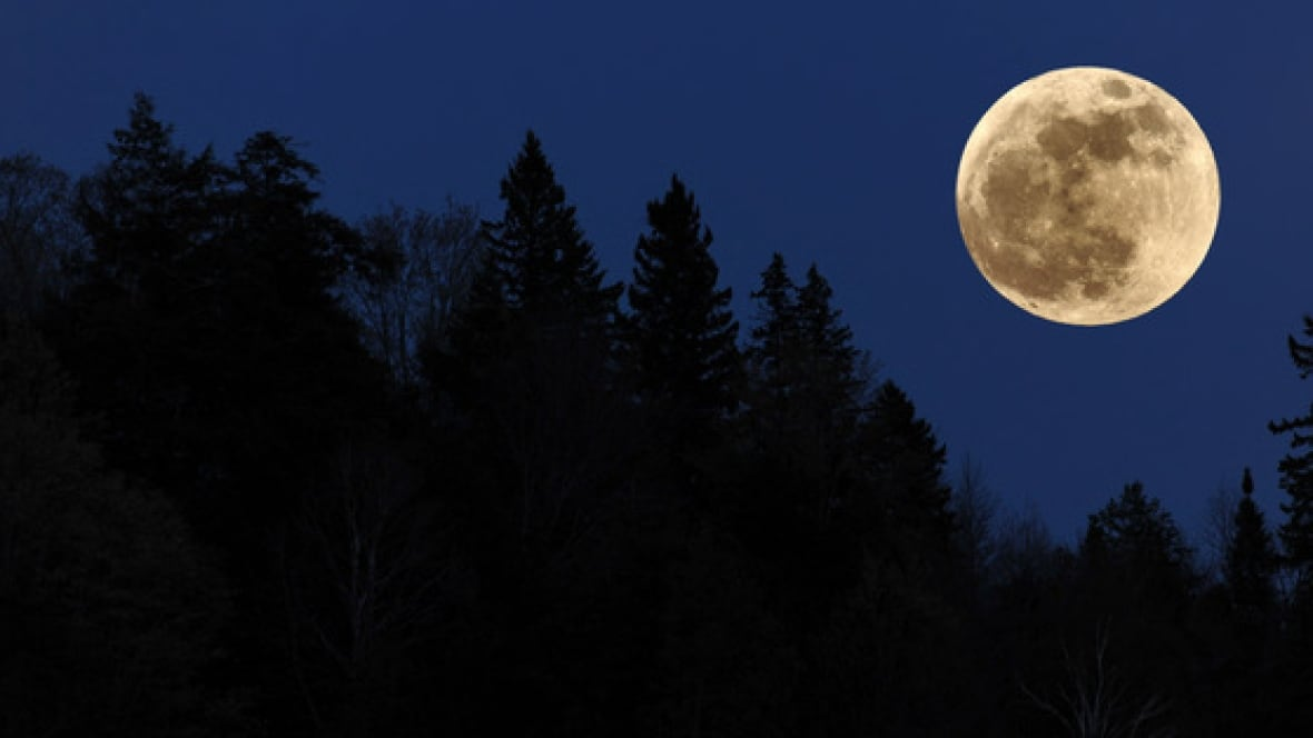 Dec 2017 Full Moon >> Christmas Day's rare full moon: How to take a great picture - Calgary - CBC News