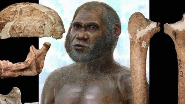 Bones found at China's Red Deer Cave, especially a thigh bone, have features that resemble those of prehistoric humans who lived in Africa 1.5 million years ago, even though the bones are only 14,000 years old.