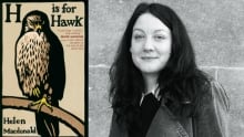 Macdonald-H-is-for-Hawk