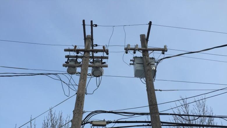 Revellers seen swinging near power lines in Kingston, Ont.